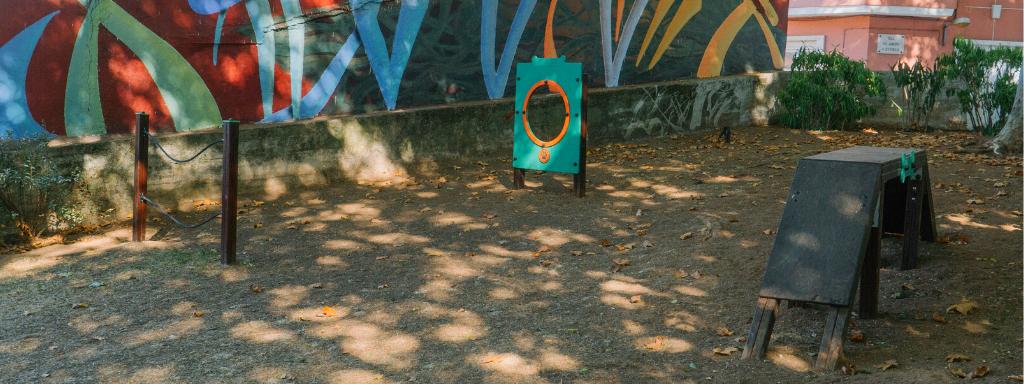 Novo parque canino na Rua Domingos Sequeira